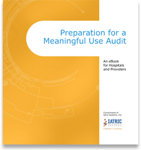 eBook: Preparation for a Meaningful Use Audit image