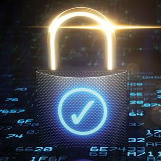 PrivacySecuritySE